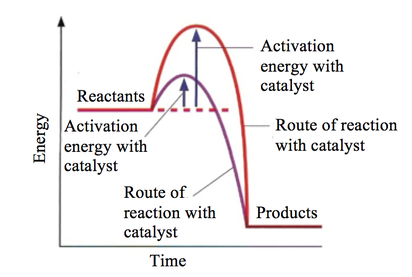 an experiment on the activation energy of solvolysis The determination of activation energy from linear heating rate experiments: a comparison of the accuracy of isoconversion methods mj starink.