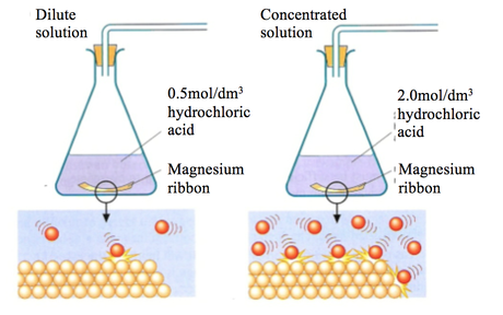 an overview of the chemical reactions between magnesium and hydrochloric acid